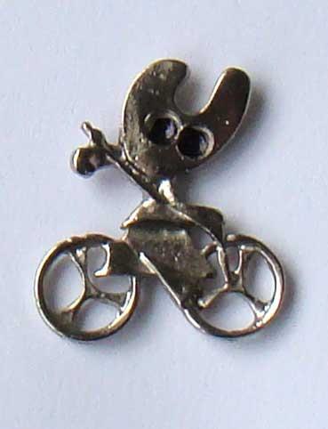 pelegrin-bicicleta